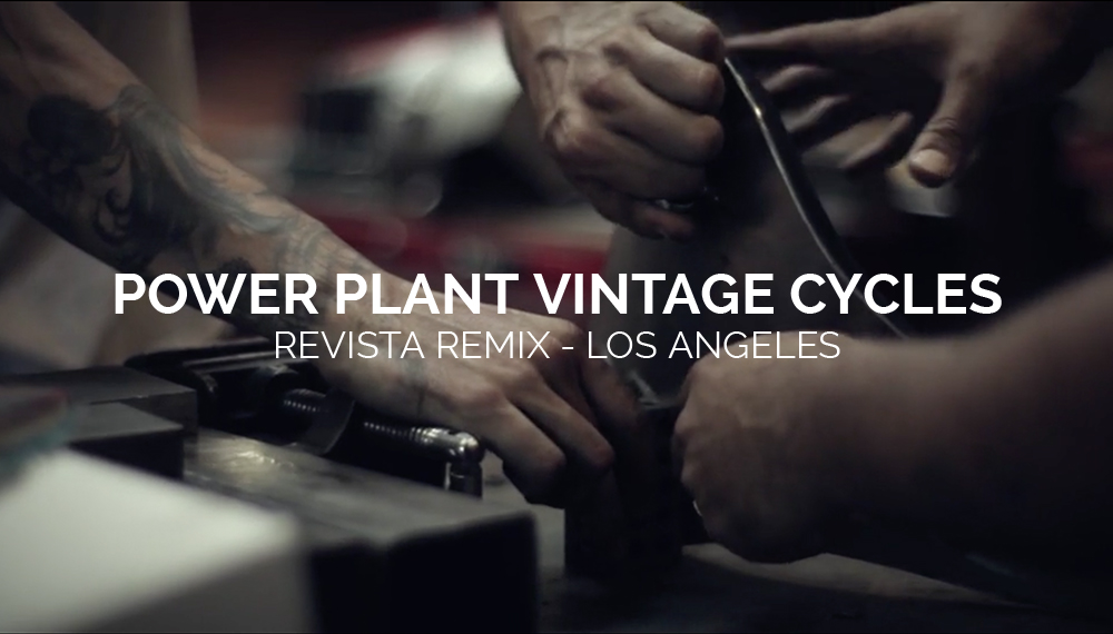 POWER PLANT VINTAGE CYCLES